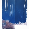 <em>F-14 Air Show</em>, 2012<br> Cyanotype and dye on silk<br> 108 x 84 inches