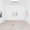 Mernet Larsen<br>  Installation View<br>  Various Small Fires, Los Angeles<br>  February 28-April 18, 2015<br>