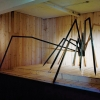 <em>The Intruder</em>, 2009<br> Steel, wood, carpet<br> 122 x 228.3 x 275.6 inches<br> Courtesy of Magazin4, Bregenz